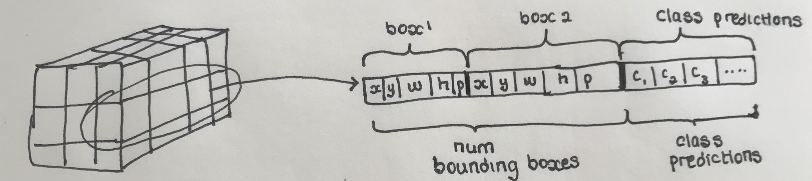 Converting Predictions to Bounding Boxes